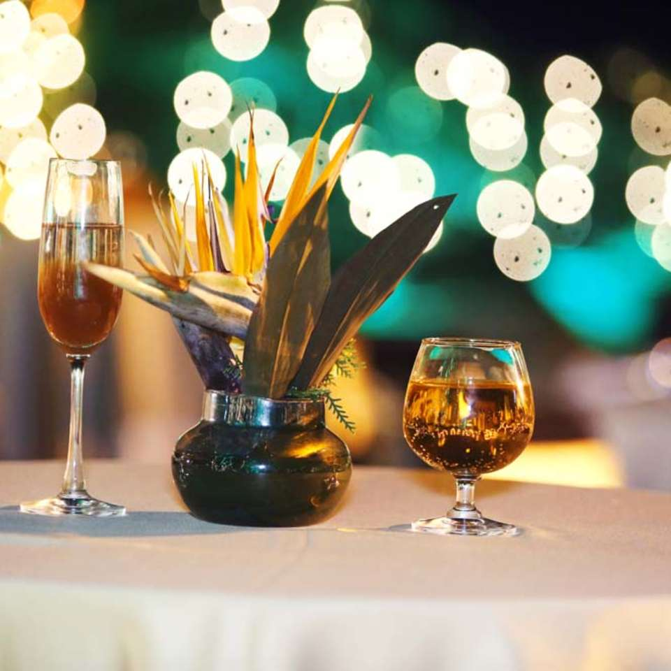The Regent Park, The Bristol Hotel Gurgaon,Party Hall In Gurgaon 5510