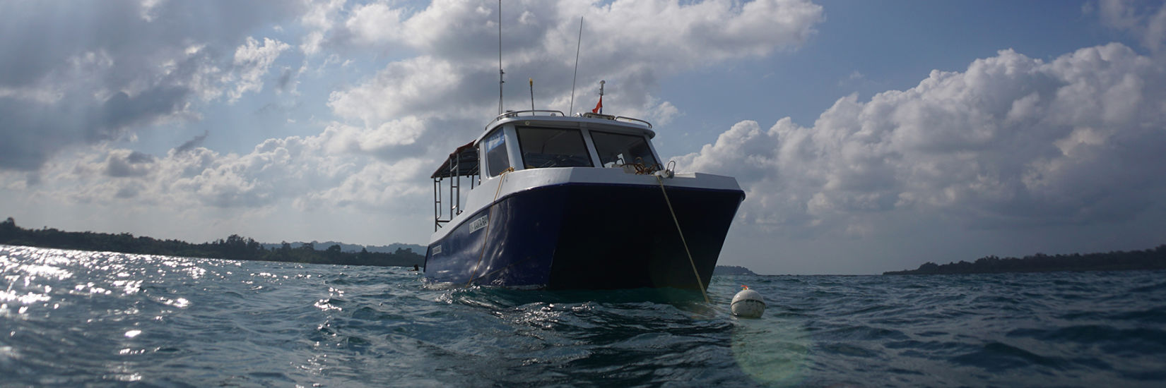 Fun diving 01 image