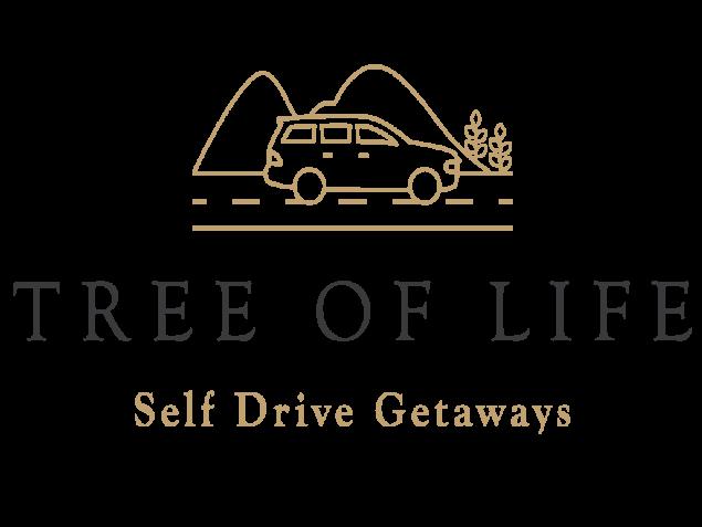 scd ToL self drive logo-06 1 pl0tp6 2