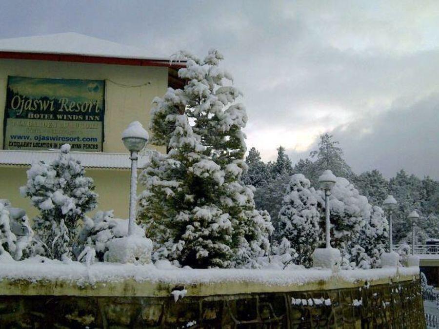 alt-text Ojaswi Resort Chaukori Chaukori Snow Capped 2 Ojaswi Hotel and Resort in Chaukori