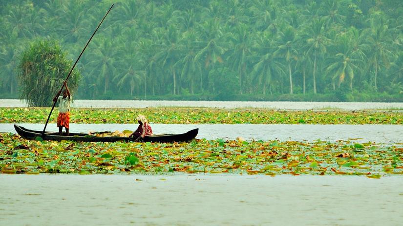 Vellayani Lake Niraamaya Retreats Surya Samudra Kovalam