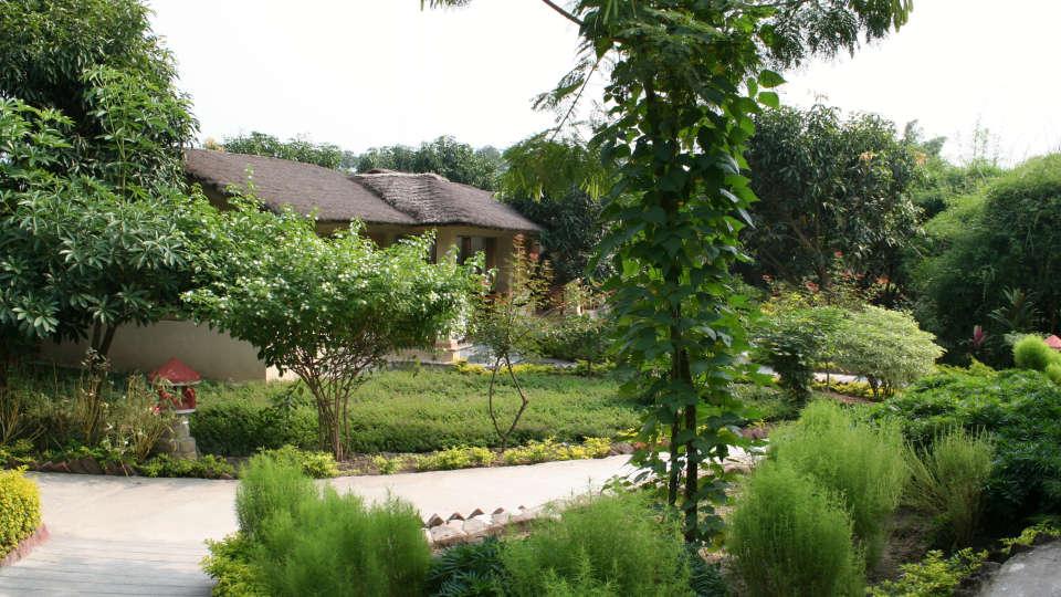 Tiger Camp Resort, Corbett Uttarakhand Cottage11