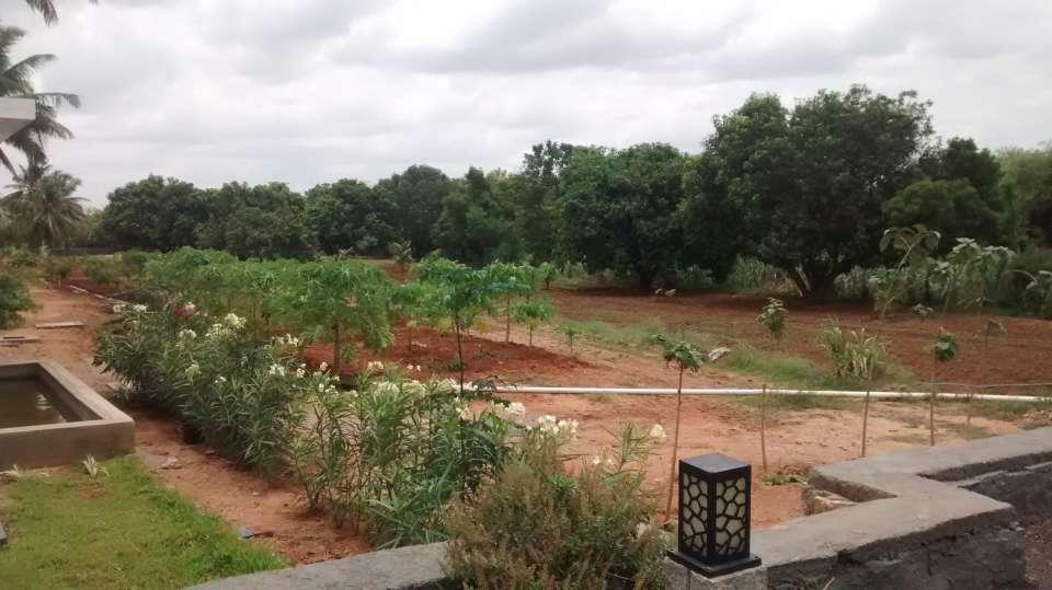 Heritage Resort Hampi Hampi 20. Organic Garden
