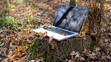 Free Wi-Fi Sarovar Portico Badrinath