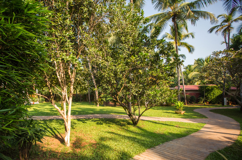 Pathway, Hamsa Villas Goa, Best Resort In Goa 1