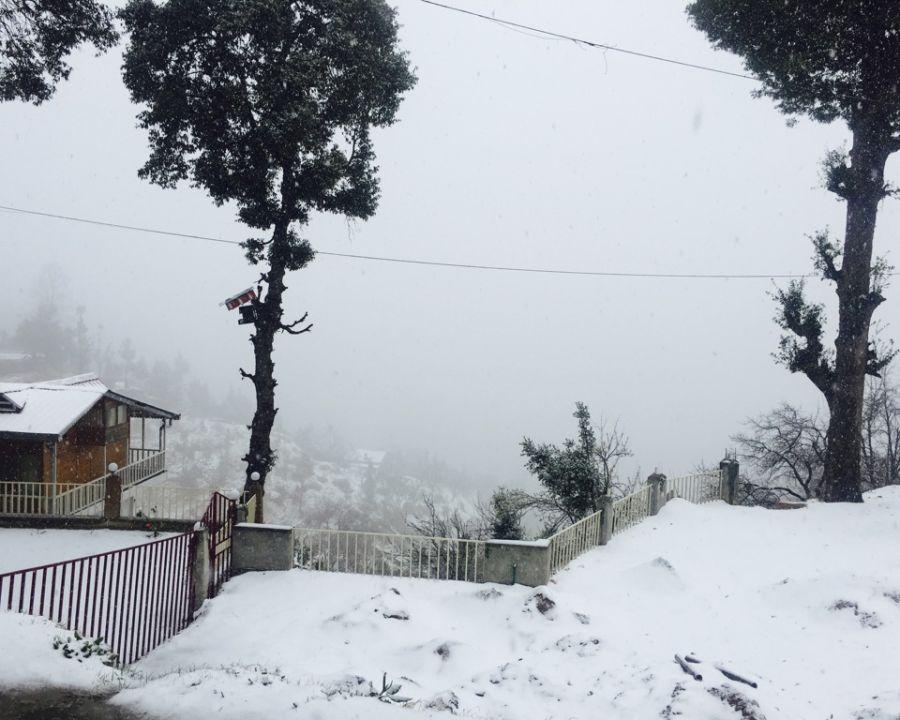 alt-text Ojaswi Himalayan Resort, Mukteshwar Nainital Snowfall time Ojaswi Himalayan Resort Mukteshwar 3