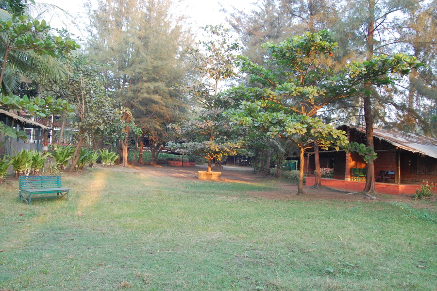 alt-text Lotus Beach Resort, Murud Beach, Ratnagiri Ratnagiri The Party Lawn at Lotus Beach Resort Lotus Beach Resort Murud Beach Ratnagiri