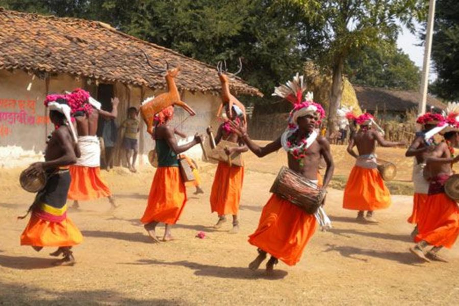 alt-text Bandhavgarh National Park Resort, Rosa Bandhavgarh Meadows,Baiga Dance