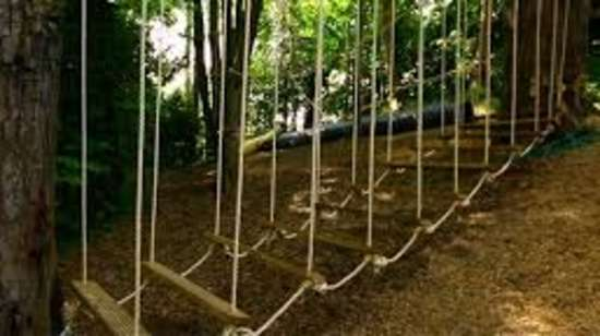 TGI Star Holiday Resort, Yercaud Yercaud Low Rope Course TGI Star Holiday Resort Yercaud