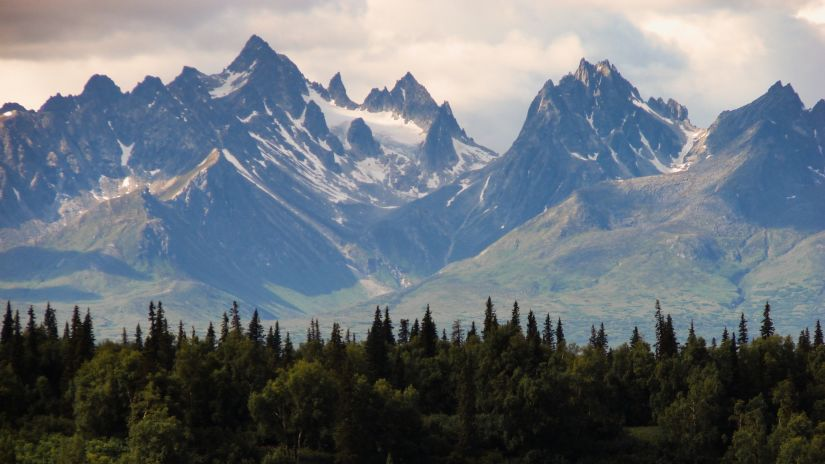 alaska-forest-hd-wallpaper-792