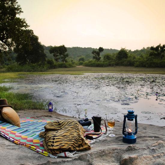 Sun Downers, Rosa Bandhavgarh Meadows
