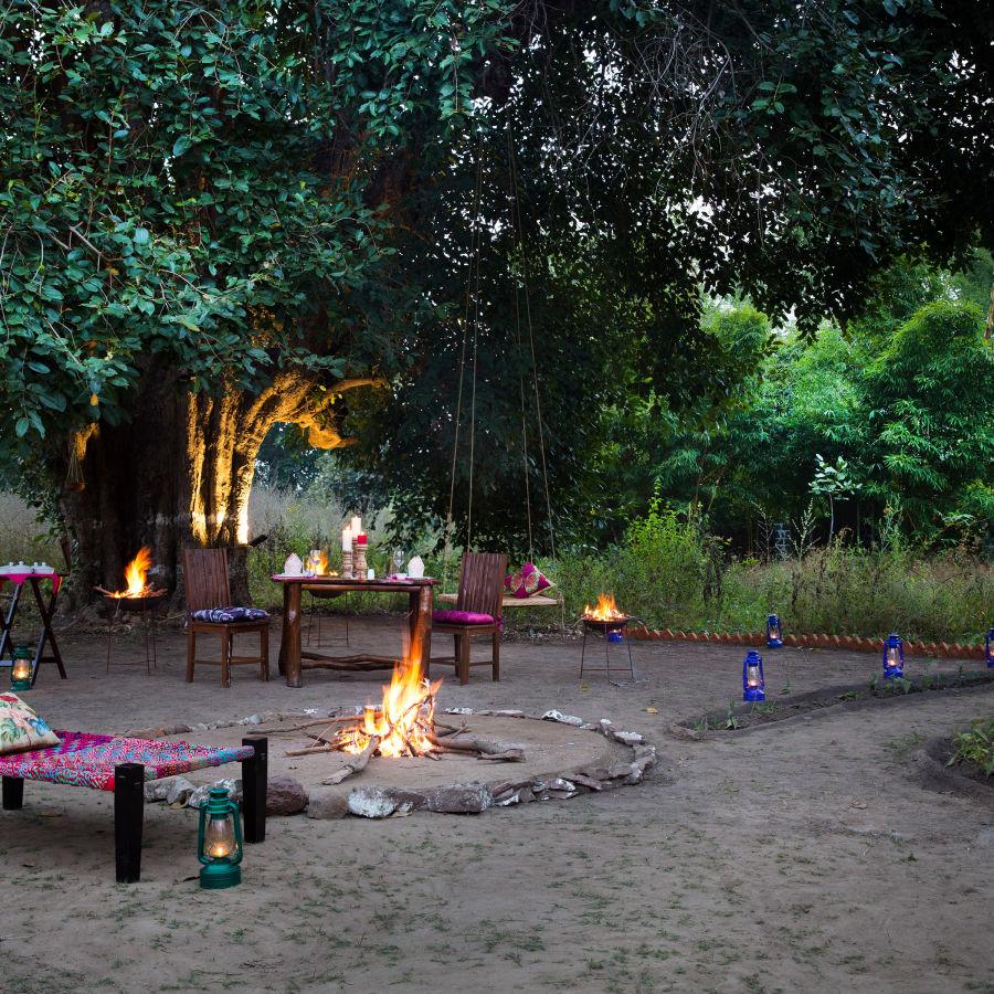 alt-text Rosa Bandhavgarh Meadows, Bandhavgarh Jungle Lodge, Bandhavgarh Resort 39