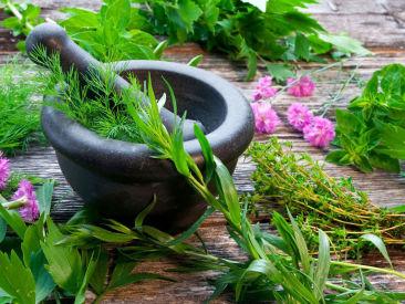 Herbal Tour