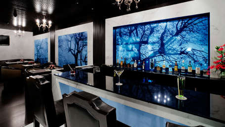 Luscious Bar, St Marks Hotel , Restaurant in Bangalore