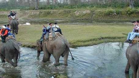 Elephant Safari at Le Roi Corbett Resort and Hotel in Jim Corbett National Park