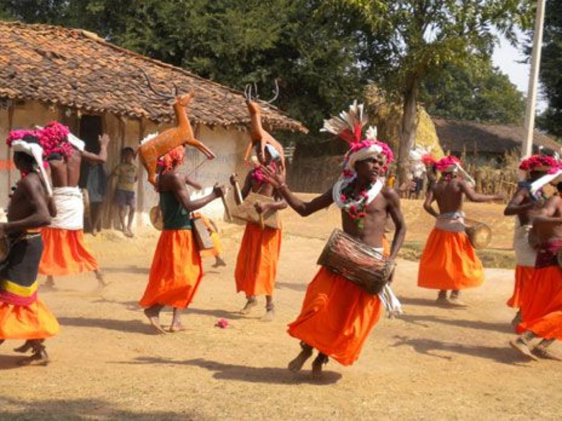 Bandhavgarh National Park Resort, Rosa Bandhavgarh Meadows,Baiga Dance