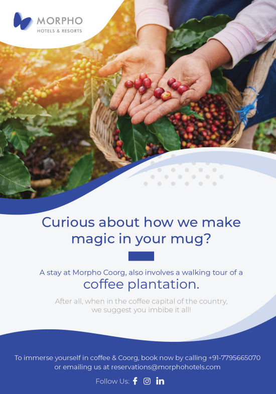 Coffee Plantation Flyer Morpho-02