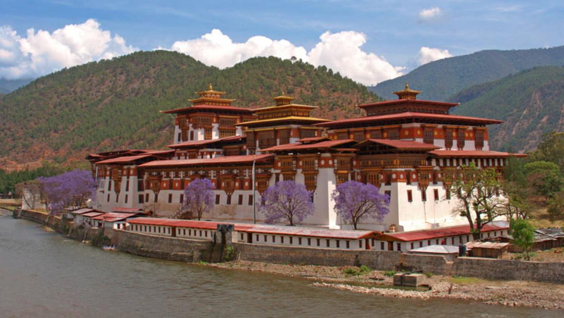 Punakha Dzong dragon nest hotel punakha