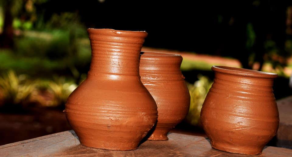 Our Native Village Bengaluru DSC 0211