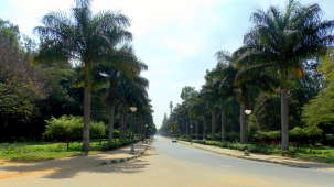 Abids Vinkas- Homestay, Bangalore Bengaluru Cubbon park abids vinkas homestay bangalore