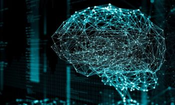 The First Steps Toward a Quantum Brain: An Intelligent Material That Learns by Physically Changing Itself