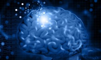Researchers Uncover How the Brain Learns From Subconscious Stimuli