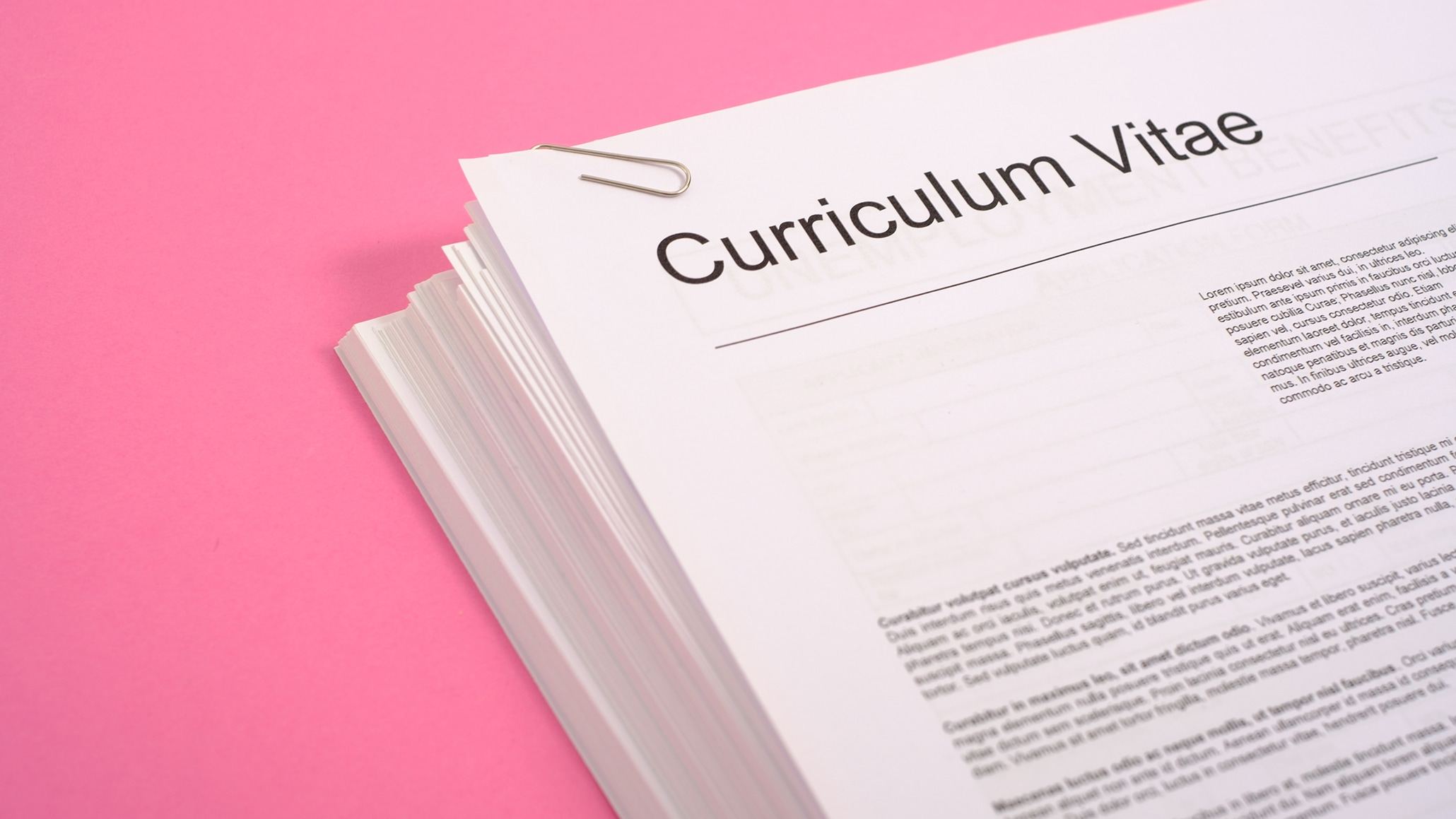 5 Tips Cara Membuat Curriculum...