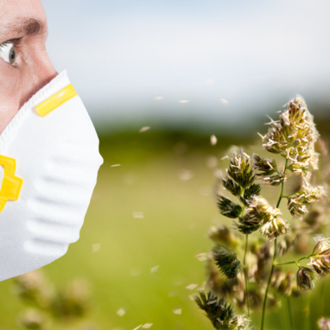 7 Signs You Are Suffering From Seasonal Allergies