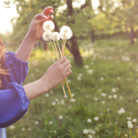 Stop Spring Sneezing