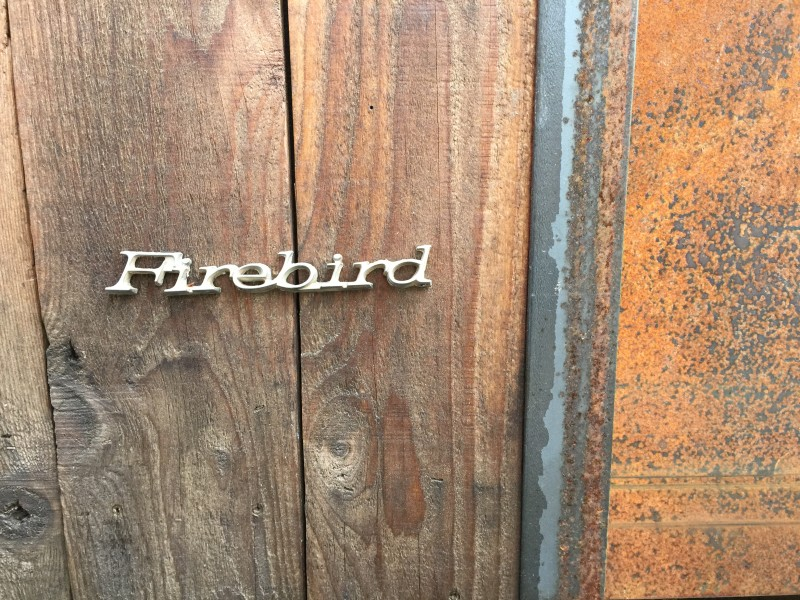 Straight from the car, Firebird, Tiny House, Eric Bohne