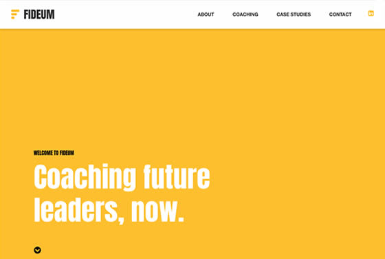 Screenshot of the Fideum website