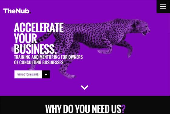Screenshot of the TheNub website