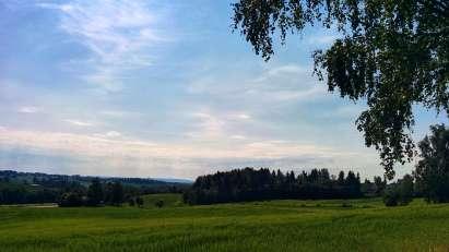 Boliger i Galgeberget på Hamar
