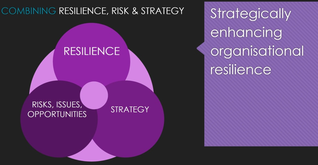 the relationship between resilience, strategy and risk