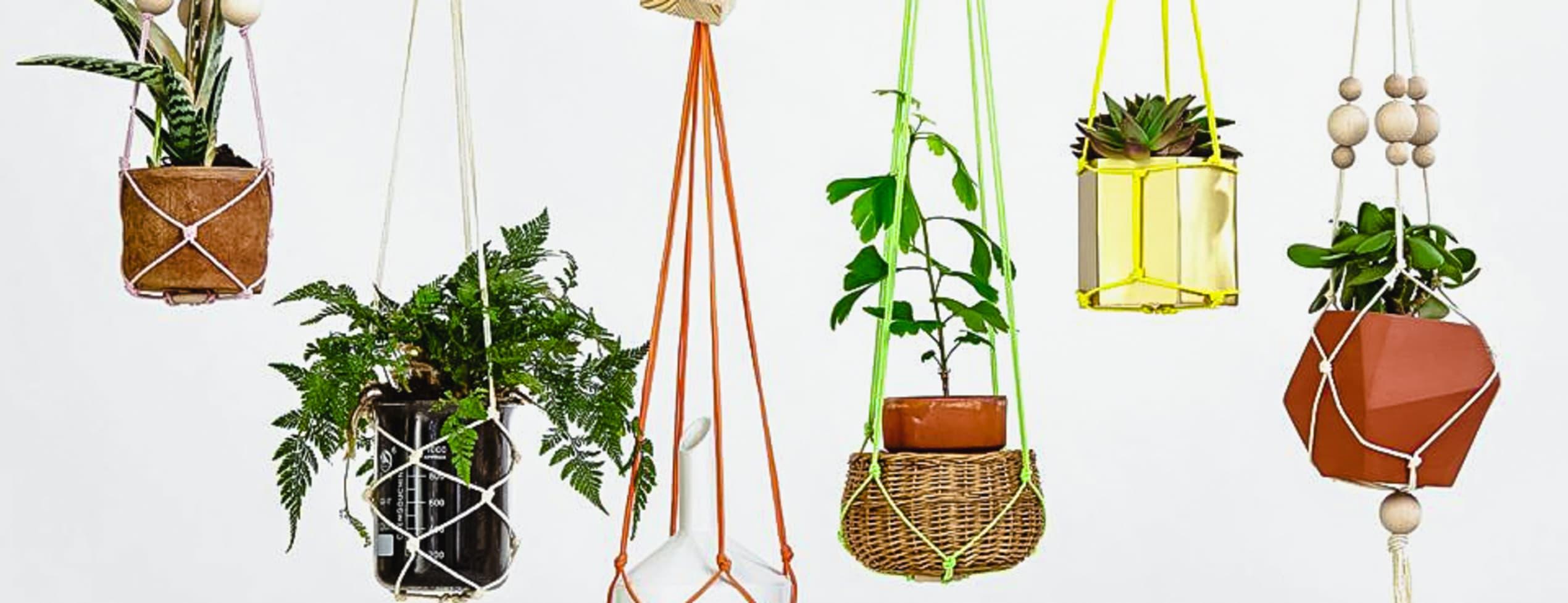 Macramé - Retro plant hangers