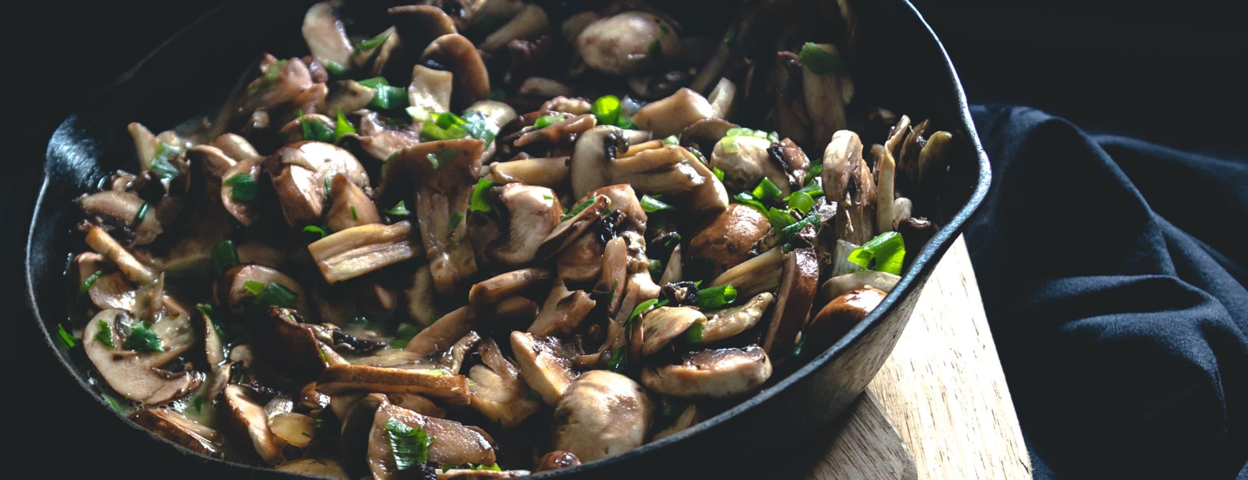 Svampsafari - plocka goda höstsvampar