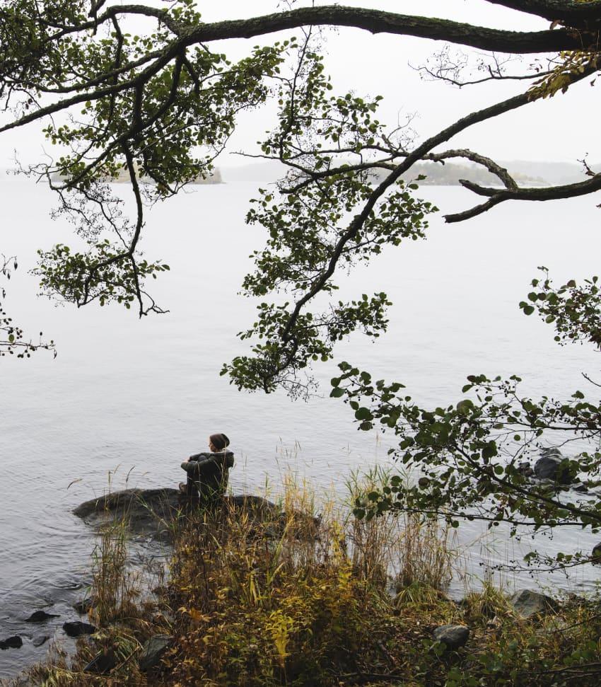 Shinrin yoku - Skogsbad