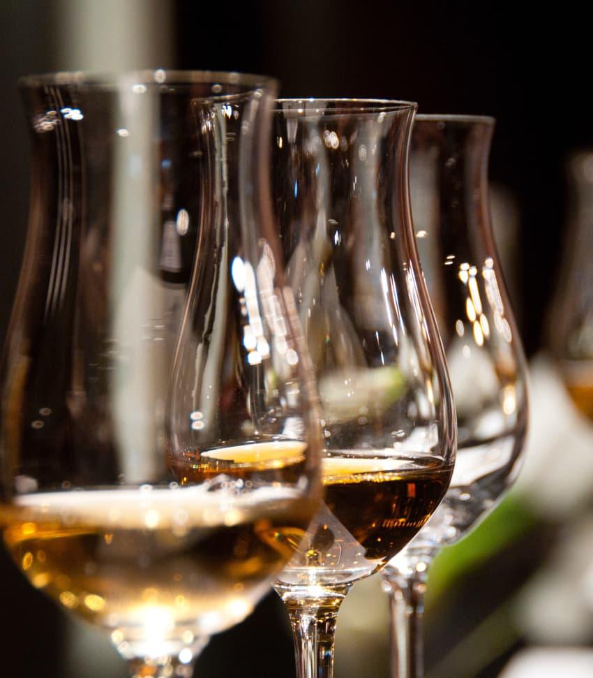 Vinprovning Naturvin Online
