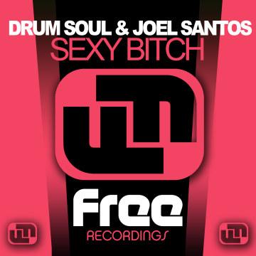 Drum Soul & Joel Santos - Sexy Bitch Artwork