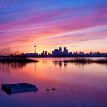 Mr.Deejayk - Toronto X Markham Artwork