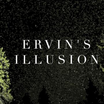 Ervin's - Illusion Artwork