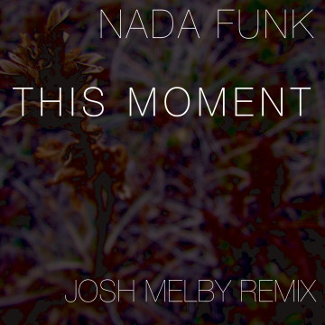 Nada Funk - This Moment (Josh Melby remix) Artwork