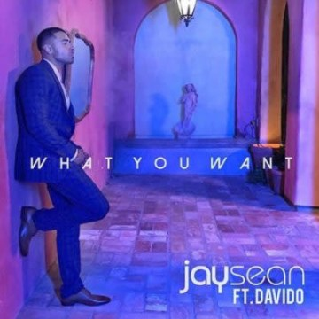 Jay Sean - What You Want FT. Davido Artwork