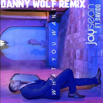 Jay Sean - What You Want FT. Davido (Danny Wolf remix) Artwork