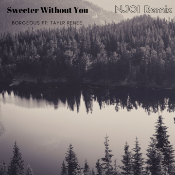Borgeous & Taylr Renee - Sweeter Without You (NJOI remix) Artwork