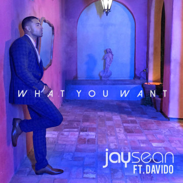 Jay Sean - What You Want FT. Davido (ROSS AG remix) Artwork