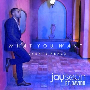 Jay Sean - What You Want FT. Davido (Lyente remix) Artwork
