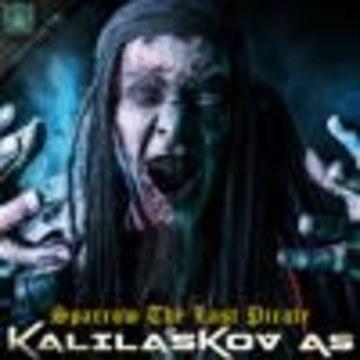 """Kalilaskov AS ☢️ - Kalilaskov AS - Sparrow The Last Pirate """"Ohm Ganesh Pro"""" Artwork"""