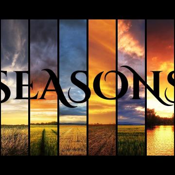 David Starfire & Stephan Jacobs - Seasons feat. Shri (IICEBERG Remix) Artwork
