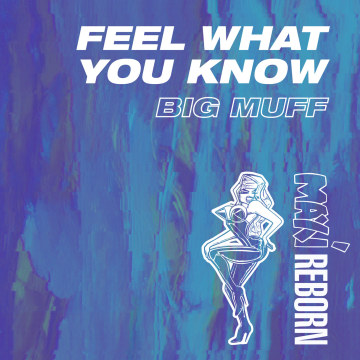 Big Muff - Feel What You Know Artwork